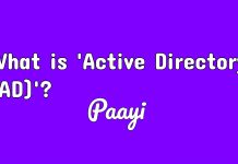 What is 'Active Directory ( AD )'?