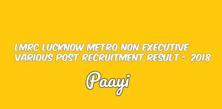 LMRC Lucknow Metro Non Executive Various Post Recruitment Result - 2018, Paayi