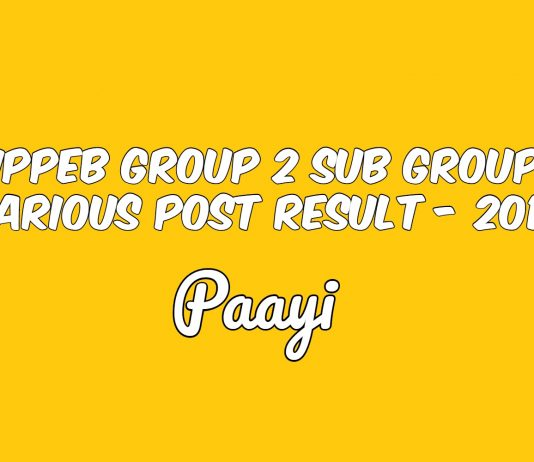 MPPEB Group 2 Sub Group 3 Various Post Result - 2018, Paayi