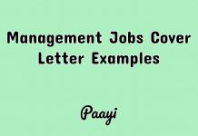 Management Jobs Cover Letter Examples, Paayi
